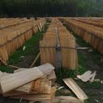 Séchage de bois